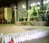 کارخانههای شالیکوبی گیلان رتبهبندی میشوند