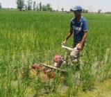 خط اعتباری ۷۴ میلیارد تومانی برای اعطای تسهیلات مکانیزاسیون کشاورزی در گیلان