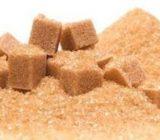 پیشبینی تولید ۳۰تن شکر        سیاه در گیلان