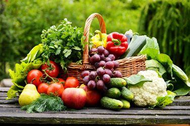 صادرات محصولات کشاورزی از گیلان رشد ۷۷ درصدی داشت