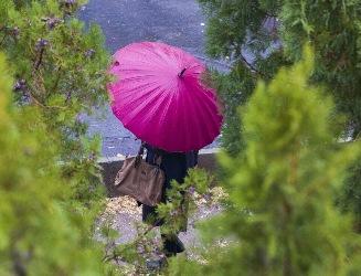 پیش بینی بارش باران ، وزش باد و برف در ارتفاعات گیلان
