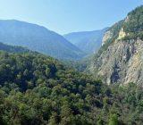 احیا و غنیسازی ۳۵۰۰ هکتار از اراضی جنگلی گیلان
